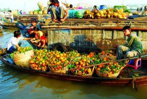 Hoa quả đầy ắp thuyền bè ở chợ nổi Cái Răng