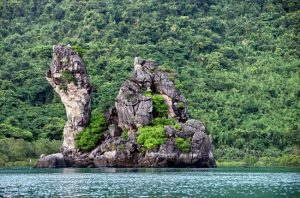 Vườn Quốc Gia Ba Mùn với nhiều động thực vật phong phú đa dạng