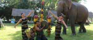 Du lịch bản Đôn hấp dẫn du khách với nhiều hoạt động thú vị, nhất là cưỡi voi