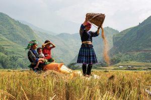 Bản Lìm Mông hấp dẫn du khách bởi những nét đẹp của người dân tộc bản địa