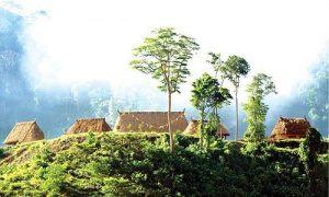 Bản Nà Luồng là nơi định cư của hơn 90 hộ dân dân tộc Lào, nơi đây có phong cảnh hữu tình và văn hóa bản địa đặc sắc