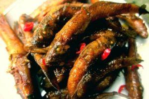 Món cá bống kho tộ ăn với cơm ăn ngon vô cùng