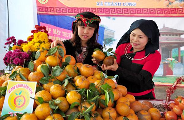 Cam Hàm Yên được vinh danh thuộc top 10 loại trái cây Việt Nam ngon nhất