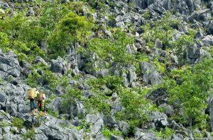 Bãi đá cổ trong cao nguyên địa chất, nơi có khắc những hình thù kỳ lạ đang được nghiên cứu
