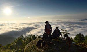 Một cảnh đẹp trên đỉnh Chiêu Lâu Thu, những người dân chăn dê trene núi