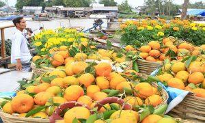 Bạt ngàn hoa quả ở chợ nổi Ngã Năm khi du lịch Sóc Trăng