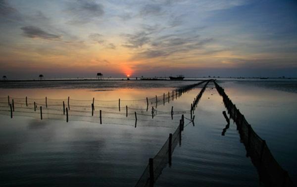 Cảnh đẹp biển Thái Bình