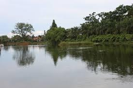 Đầm Vạc nơi nổi tiếng có loài tép dầu ngon nức vùng Vĩnh Phúc