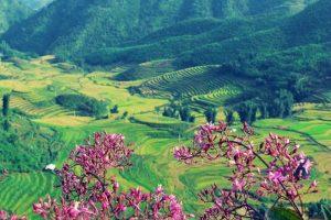 Điện Biên say đắm lòng người với cảnh sắc thiên nhiên tươi đẹp
