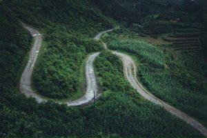 Con đường như trải rộng, hai bên là màu xanh mát của cây cối