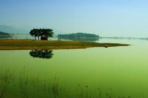 Hồ Đải Lải mộng mơ , tươi đẹp say lòng du khách