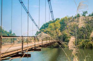 Cây cầu bắc trên Hồ Ly