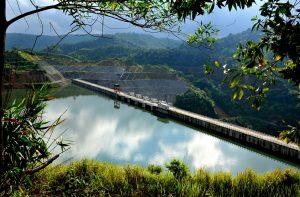 Hồ Trúc được nhiều cây xanh và thảm thực vật bao bọc