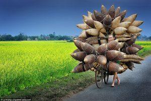 Một cảnh đẹp ở Hưng Yên