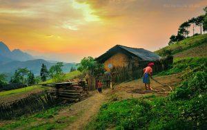 Một cảnh yên bình ở Bắc Quang