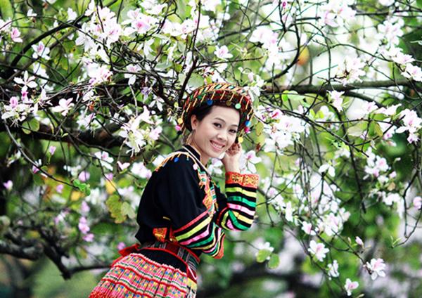 Hoa ban là đặc trưng của Tây Bắc tọa nên nét duyên cho Mộc Châu