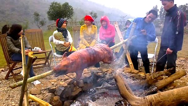 Lợn Mường hấp dẫn du khách