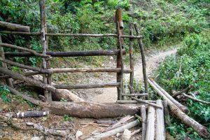 Những rào chắn đi trên đường chinh phục Lùng Cúng do người dân tạo ra để tránh trâu bò vào thảo nguyên