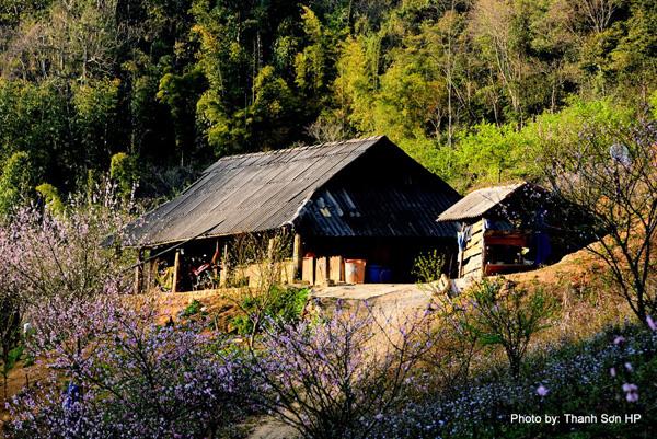 Một ngôi nhà xinh đẹp ở xã Lóng Luông
