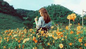 Hoa và em và núi rừng ở Mộc Châu Happy Land