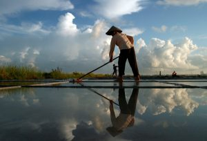 Mỗi khi nắng lên, người dân lao động từ sáng đến tối để làm ra hạt muối tinh khiết