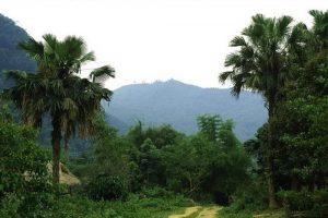 Cảnh quan yên bình ở núi Thắm