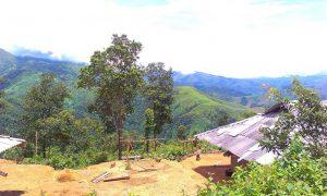 Những mái nhà bên sườn núi của bản Pú Đao
