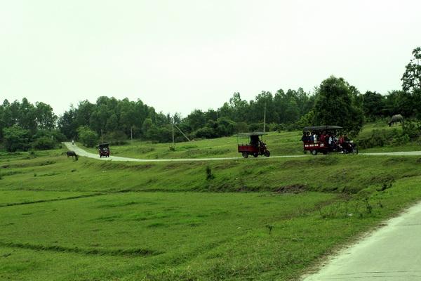 Xe lam là phương tiện vạn chuyển chủ yếu trên đảo
