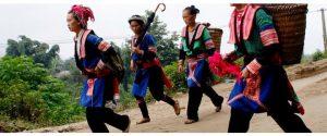 Những người phụ nữ Mông đang lên nương