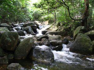 Suối Giải Oan với dòng nước trong vât