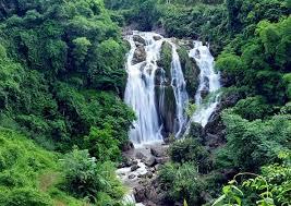 Thác Gò Lào nằm giữa cánh rừng