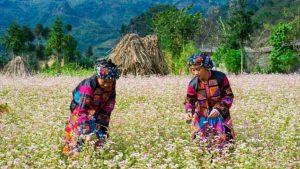Đồng bào dân tộc ở khu vực đèo Gió-thác Tiên