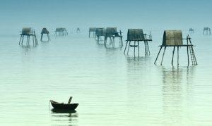 Vẻ đẹp mơ màng ở biển Đồng Châu