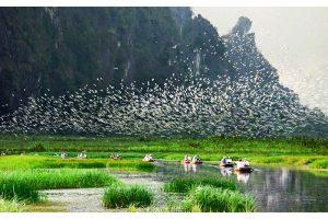 Vườn quốc gia Thung Nham
