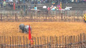Lễ hội diễn ra được sự quan tâm của mọi người dân địa phương