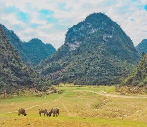 Khung cảnh bình yên được bao bọc bởi bốn bên là núi, ỏ giữa là cảnh đẹp mênh mông khiến du khách lạc trôi