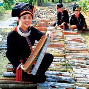 Quế là đặc sản của huyện Văn Yên nói riêng và tỉnh Yên Bái nói chung