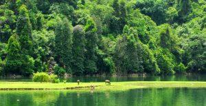 Mênh mông vườn quốc gia Ba Bể