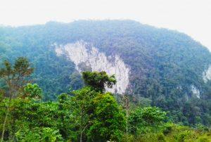 VQG Xuân Sơn có núi non hùng vĩ
