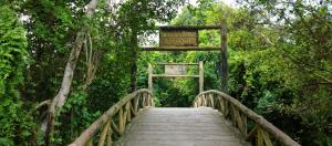 Khu du lịch Xẻo Quýt hòa vào thiên nhiên