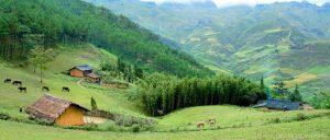 Thảo nguyên Yên Minh đẹp mông mơ,trong xanh và mát lành