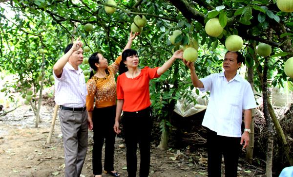 Phát triển kinh tế ở huyện Yên Sơn